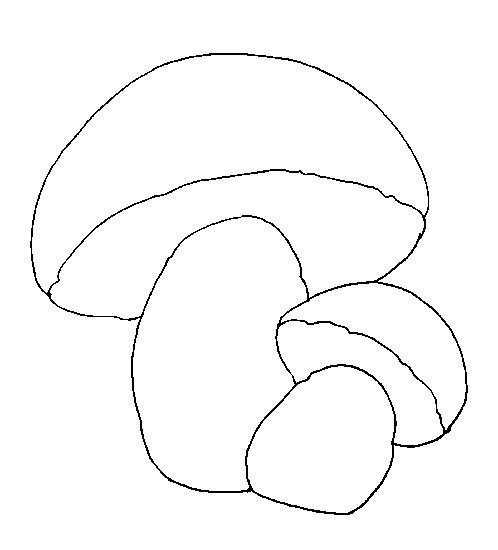 1. Нарисуй на листе бумаги контур