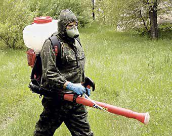 Химическую обработку против клещей проведут в городских лесах Тюмени