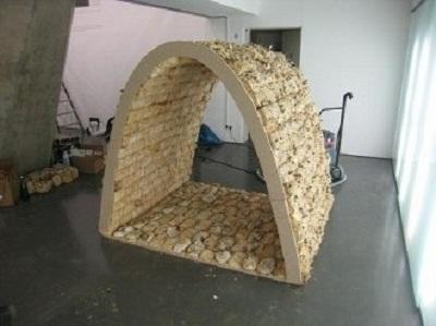 Биолог доказал, что грибы могут использоваться в качестве строительного материала, который по прочности не уступает даже бетону