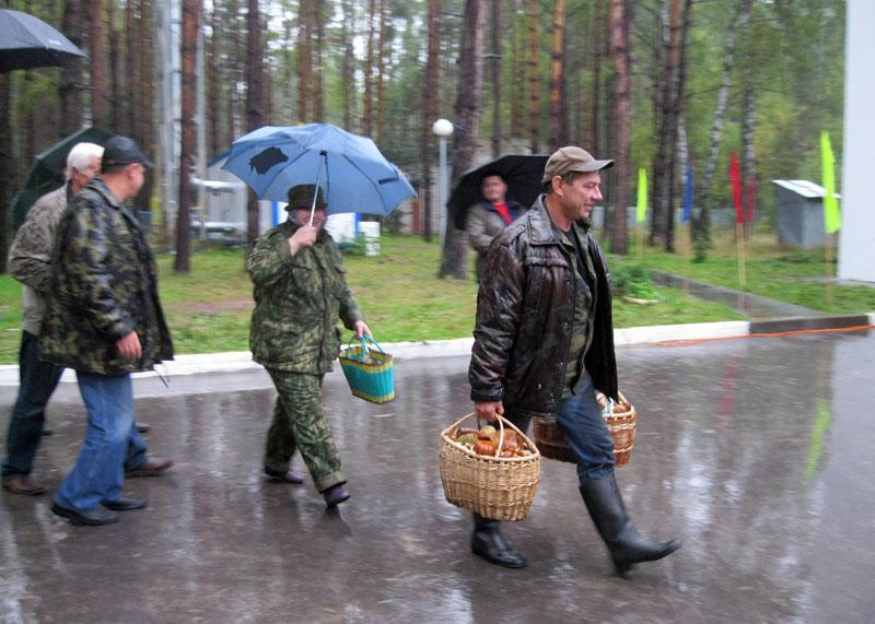Несмотря на сильный дождь, нашлось много желающих посетить фестиваль и принять участие в чемпионате по сбору грибов