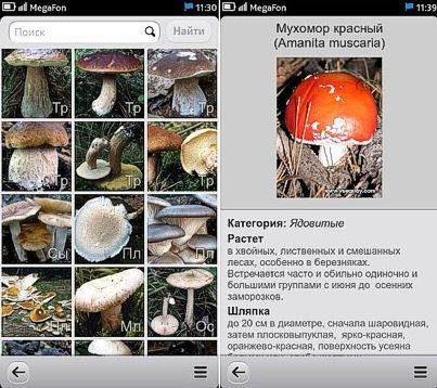 Программа Энциклопедия грибов под Android