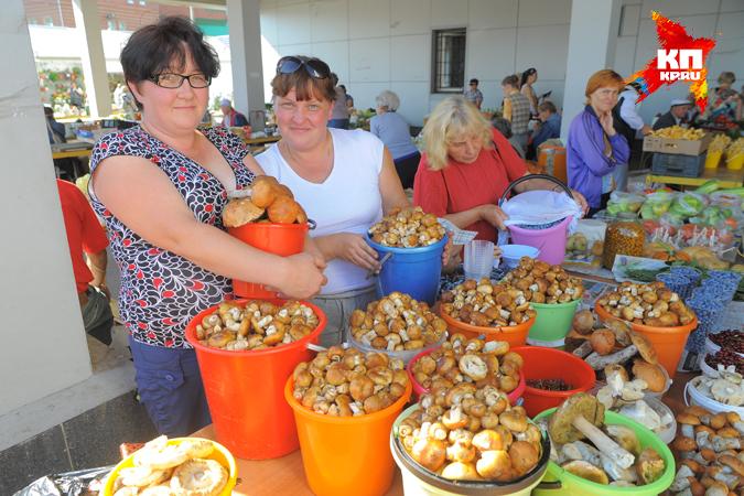 Из-за июньской засухи в Прикамье неурожай грибов