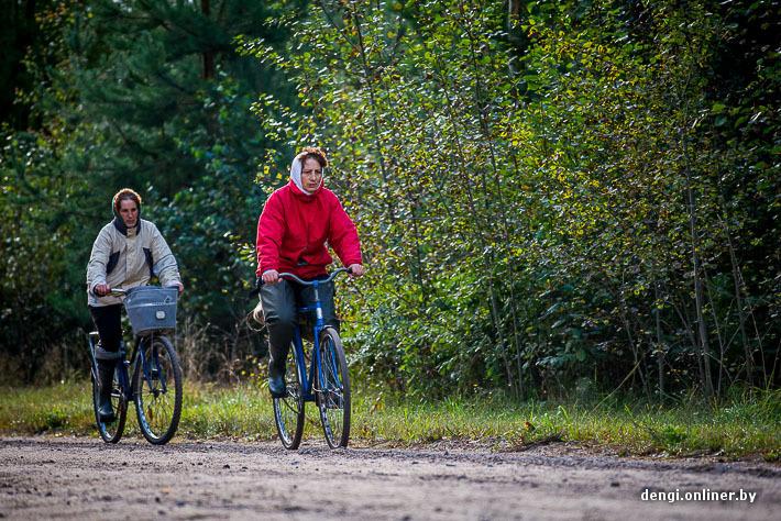 Вечереет, две уставшие женщины бредут по дороге, ведя велосипеды. Вот-вот они скроются за горизонтом, растворившись в болоте.