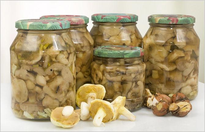 Отдельного внимания заслуживают маринованные и соленые грибы. Фото: Fotolia/PhotoXPress.ru