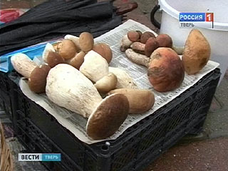 Специалисты рекомендуют быть осторожнее с грибами