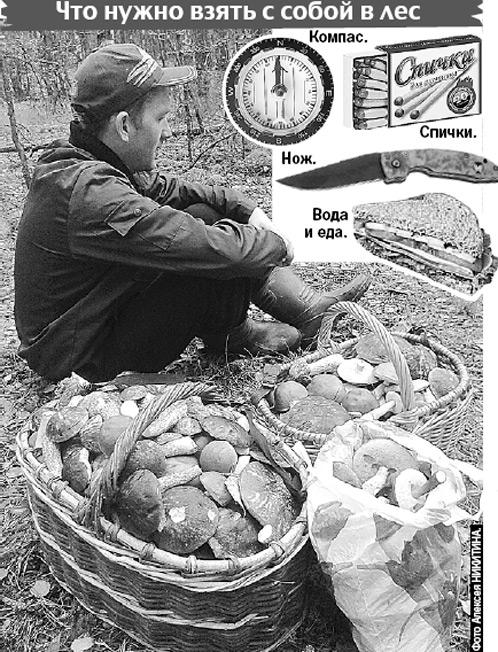 Как грибнику не пропасть во Владимирских лесах