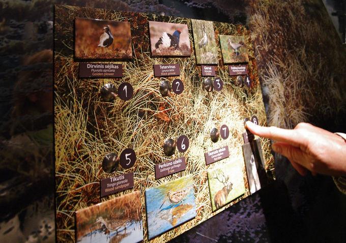 Интерактивный музей Каманского болота