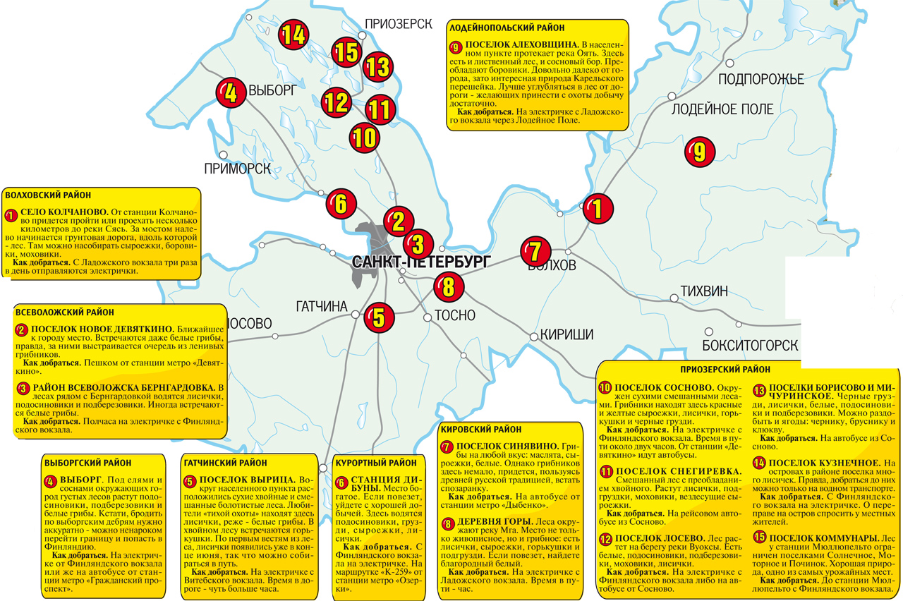 Карта грибника Ленинградской области