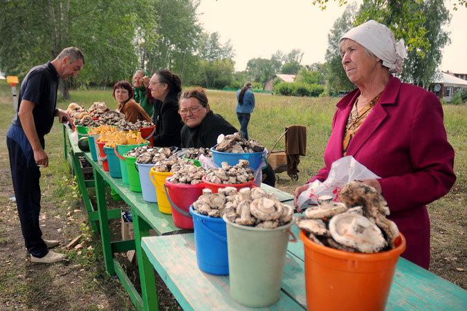На кемеровских рынках начали продаваться маслята, лисички и подосиновики Фото: Константин НАГОВИЦЫН