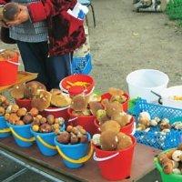 На рынках появились бабушки торгующие всевозможными грибами и ягодами