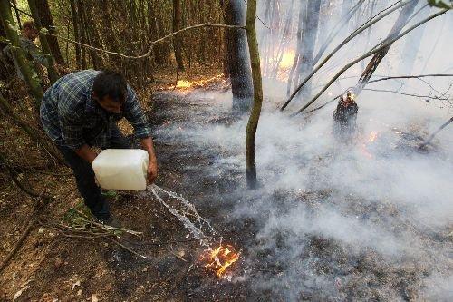 """Грибник (охотник, турист, еtс) должен будет """"Принять все возможные меры по тушению и недопущению распространения лесного пожара силами и средствами, находящимися в их распоряжении"""", то есть попросту тушить огонь всеми имеющимися под рукой средствами"""