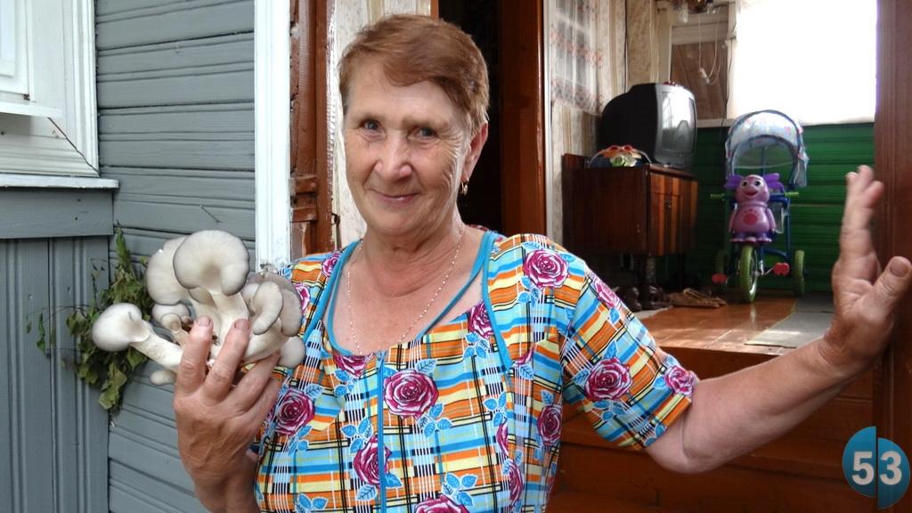 В Новгородской области 73-летняя учительница начальной школы Нина Степанова разработала бизнес-проект по выращиванию грибов